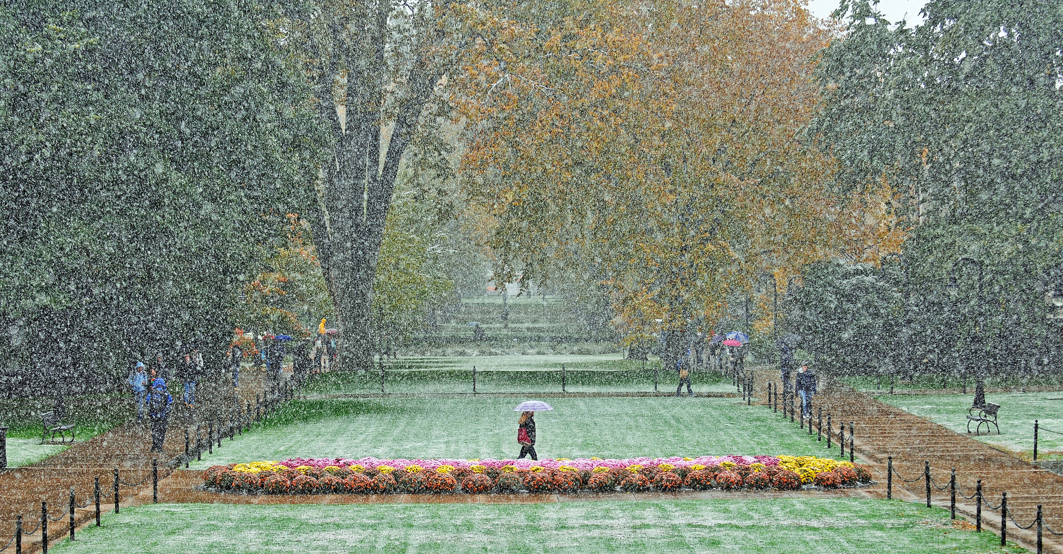 great shot of today s snow the penn stater magazine snow05