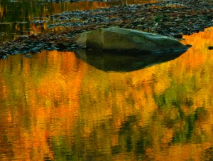 Rock With Reflections of Autumn Leaves, by Stephen Hirshon.