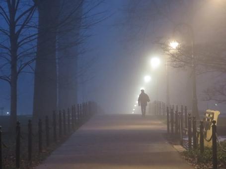 IMG_5281.Sue_Baker_fog